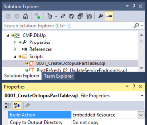 Visual Studio Solution Explorer, Build Action Embedded Resource